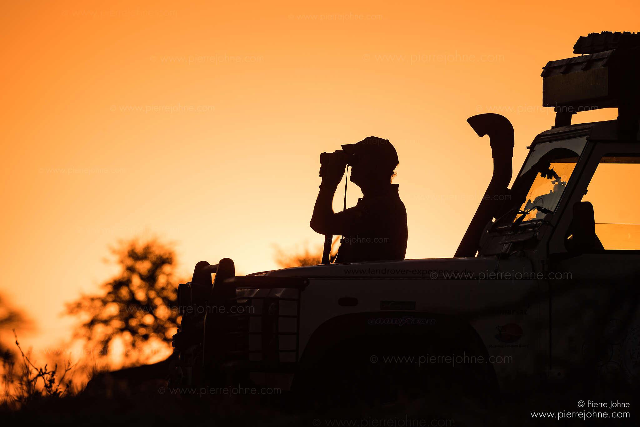 Looking for Wildlife, Elephant Sands, Tutume, Botsuana